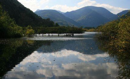 See d'Urbès