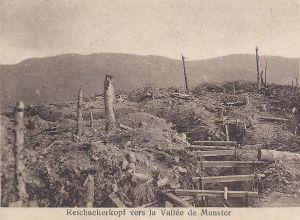 12 Reichackerkopf vers la Vallée de Munster