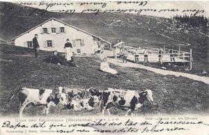 13 Kahlenwasen dated 1904