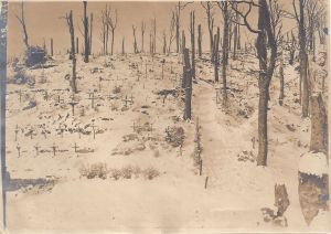 HWK German graves in the snow
